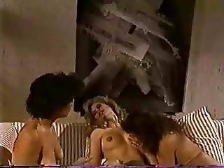 Hermaphrodite Sunset Thomas With Shanna Rose And Susan Nichols