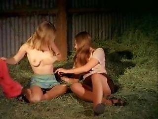 Southern Comforts 1971
