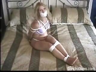 Sandra 7