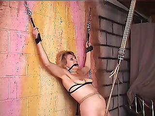 Bondaged And Roped Bdsm Blonde Gets Her Nips And Cunt Clamped
