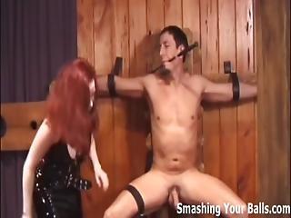 Balls, Bdsm, Domination, Dominatrix, Femdom, Fetish, Mistress, Pov, Slave, Torture