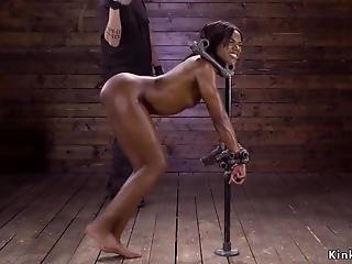 Slim Ebony Whipped In Device Bondage