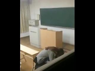 Amatør, Skole
