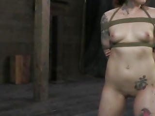 Tattooed Sub Gets Pussy Spread Open