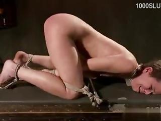 bondage, hardcore, masturbação, rude, sexo, brinquedos