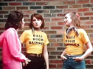 Not High School Bunnies 1978