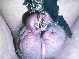 φετίχ, πέος, μικροσκοπικό, βασανιστήριο