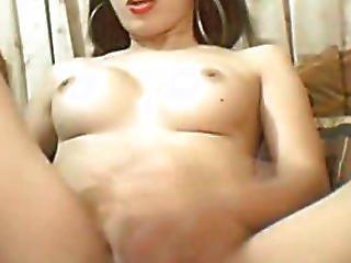 Amateur, Aziatisch, Dikke Lul, Dikke Tiet, Rondbostig, Ejaculatie, Masturberen, Ladyboy, Monster Lul, Poes, Schemale, Transsexueel, Transsexueel, Webcam
