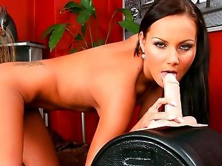 Me And My Sybian Volume 034