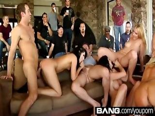 Wild Extreme Orgy Parties Exposed Compilation