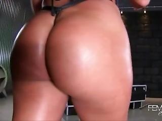Femdom Ass Worship Compilation Mania