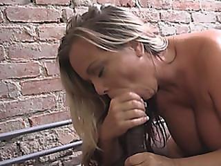 Cougar Amber Lynn Bach Rides Dark Rod In Prison