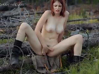 Brea In The Forest