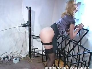 Whipping Machine For Glamour Blonde