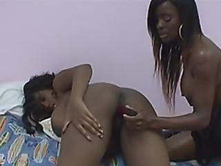 Pregnant Black Slut Is Having Fun With Her Busty Friend Using Big Sex Toys