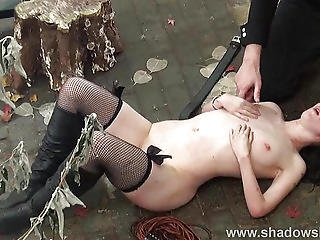 Sheena Shaw cant live without anal screw