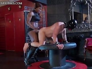 Mistress Kiana Strapon