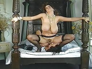 Duke Of Knockers Big Tits Movie