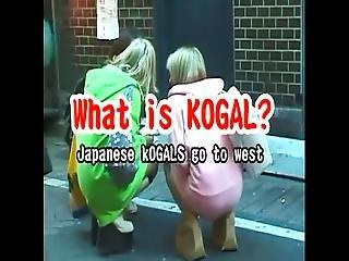 Japanese Kogyal