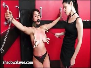 Submissive Lesbian Teen Whipping And Latina Bdsm Of Punished Lezdom Masochist In Strict Impact Play And Torments To Tears