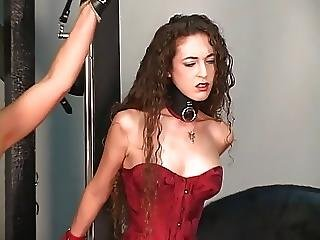 Bdsm, Blonde, Brunette, Groupsex, Latex, Mature, Milf, Nylon, Older Man, Redhead, Sex, Slave, Strapon, Torture