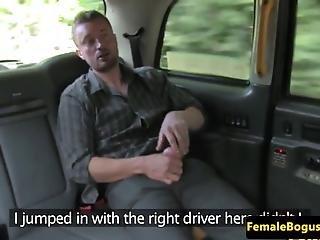 Sex op de achterbank