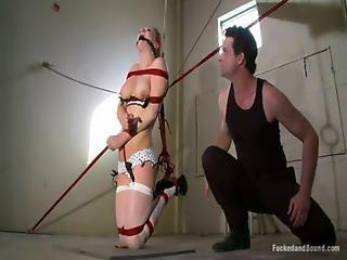 Anal Discipline For Audrey Hollander