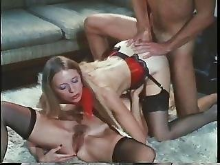Anal, Bisexual, Brunette, Facial, Groupsex, Hairy, Hairypussy, Lingerie, Milf, Nylon, Pussy, Sex, Threesome, Vintage