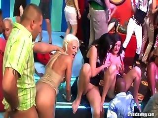 Drunk Sex Orgy - Bikini Beach Balls
