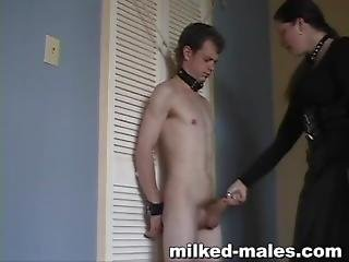 Milked Mail - Painful Spanking By Talkative Chick In Leather Skirt