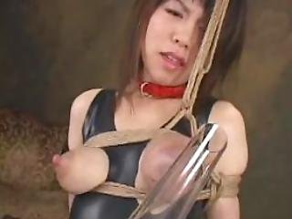 Japanese Forced Lactation