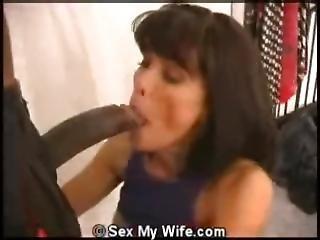 Sex Swing Amazing