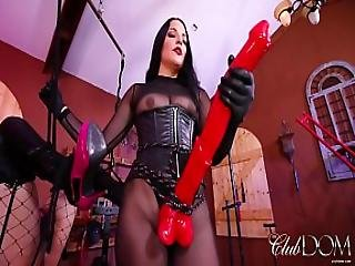 Mistress Michelle Has Lots Of Horse-power Caned As An Example