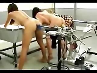 Anal Dildo Machine Fuck Competition