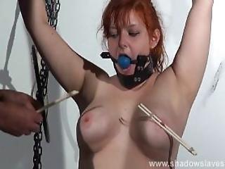 sex shop sweden sex free videos