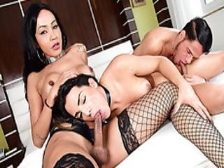 Ts Melyna And Thais Gets Banged By Alex
