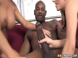 Haley Cummings And Shay Foxx Interracial Threesome Sex