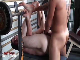 Homo kunto sali orgia