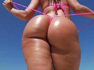 Big Anal Asses - Hard X - Silvavids.com