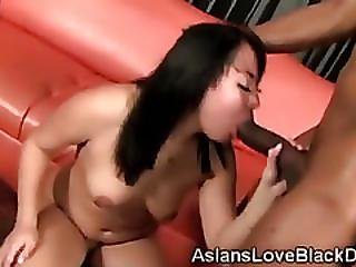 Hot Ass Korean Babe Tina Lee Blows A Massive Black Shaft