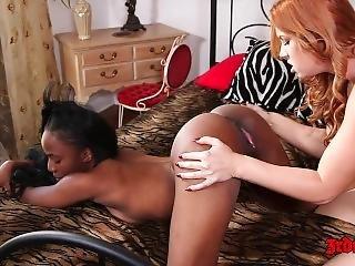 Edyn Blair Licks Sarah Banks Black Pussy