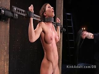 Slave bodybuilder female bondage