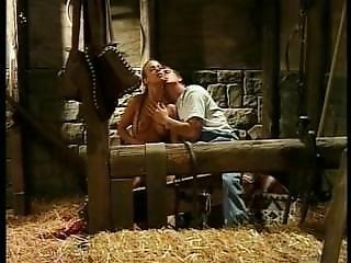 Gauge With Mojo In The Barn Btk