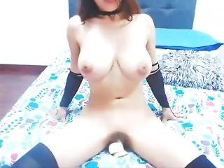 Busty Latina Camgirl Solo