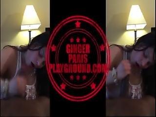 Gingerparisplayground.com