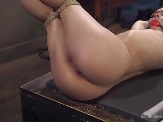 Sas 3