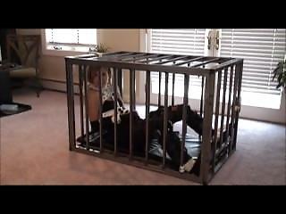 Cutie In Cage Bondage 2