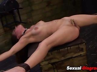 Spread Bdsm Slave Clamped