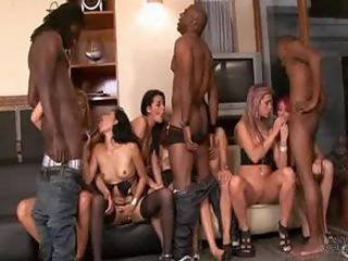 Lords of porn latina orgy final, sorry
