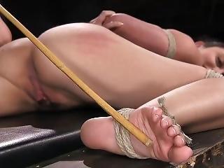 Bdsm Foot Torture